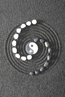 yin yang1