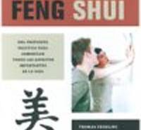 feng shui heute es2