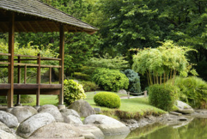 jardin oriental verdoyant
